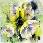 CHRISTIANE ALLENBACH | FLEURS BLANCHES IMAGIN 17 x 17 cm