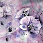 CHRISTIANE ALLENBACH | ORCHIDEES 20_28 POUR PP 30 x 40 cm