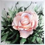 PEINTUREMAMANLOTUS | CHRISTIANE ALLENBACH | ROSE 20x20 MON PAP