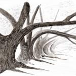 PEINTUREMAMANLOTUS | CHRISTIANE ALLENBACH | ARBRES TOMBANTS