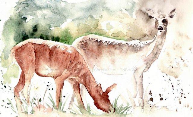 Peinturemamanlotus   CHRISTIANE ALLENBACH   BICHES SKETCH