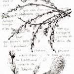 PEINTUREMAMANLOTUS | CHRISTIANE ALLENBACH | CHATONS ESPRIT NATURALISTE