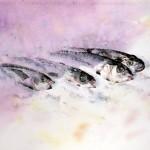 CHRISTIANE ALLENBACH | POISSONS SUR GLACE POUR PP 30 x 40 cm