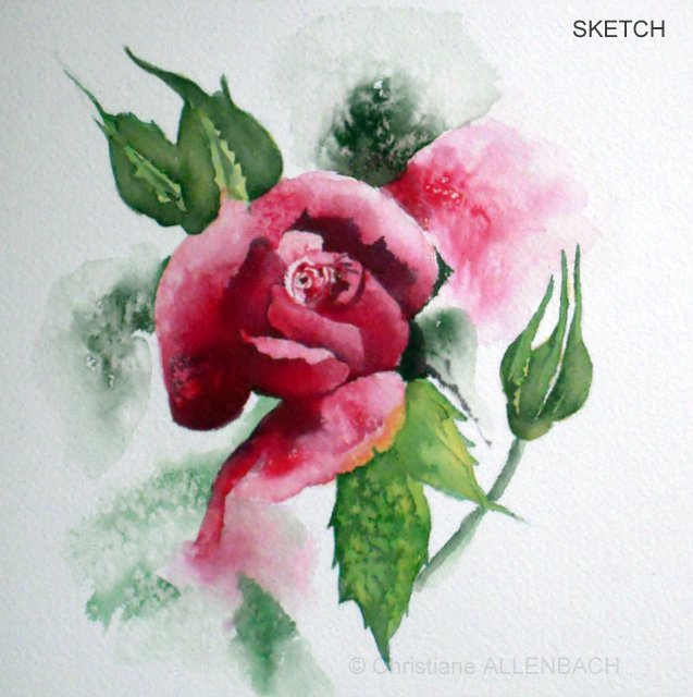 CHRISTIANE ALLENBACH | ROSE SHORT SKETCH