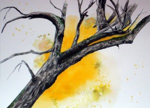 allenbach-christiane-arbre-zone-humide-30-x-40-cm