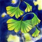 CHRISTIANE ALLENBACH | FEUILLES DE GINGKO 20 x 20 cm