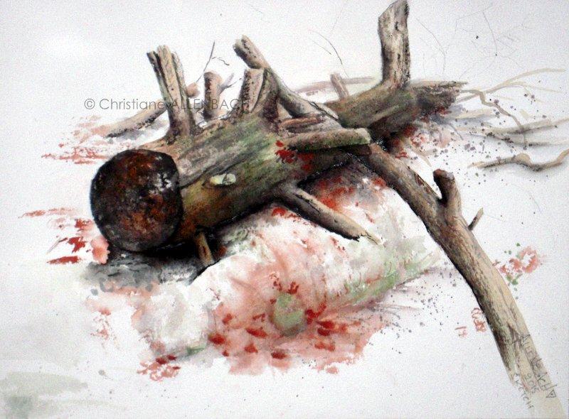 CHRISTIANE ALLENBACH SKETCH TRONC MORT 2015 CENTENAIRE