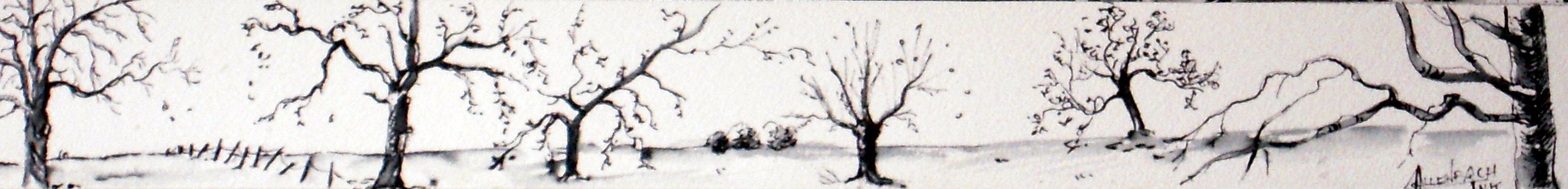 allenbach-chrisiane-desolation-oct