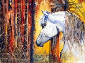 ALLENBACH CHRISTIANE REVE DE LIBERTE 30 x 40 CORNWALL