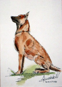 ALLENBACH CHRISTIANE STUDY DOG
