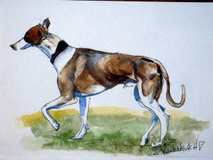 ALLENBACH CHRISTIANE STUDY DOG_