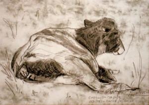 allenbach-christiane-dessin-rapide-vache-carre-conte-estompe