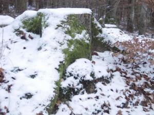 allenbach-christiane-neige-2j-10