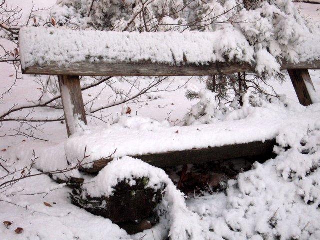 allenbach-christiane-neige-2j-104