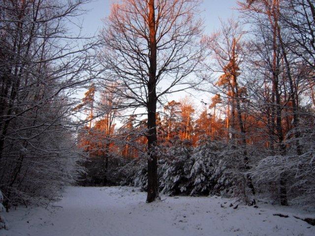 allenbach-christiane-neige-2j-119