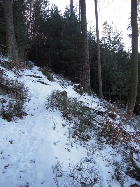 allenbach-christiane-neige-2j-12