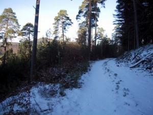allenbach-christiane-neige-2j-19