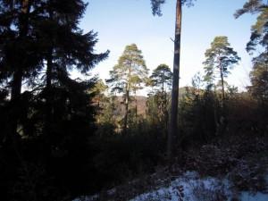 allenbach-christiane-neige-2j-20