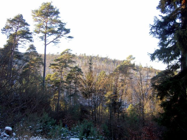 allenbach-christiane-neige-2j-21