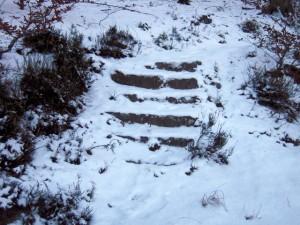 allenbach-christiane-neige-2j-23