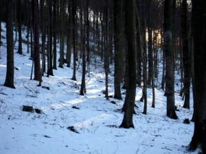 allenbach-christiane-neige-2j-27