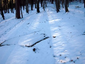 allenbach-christiane-neige-2j-29