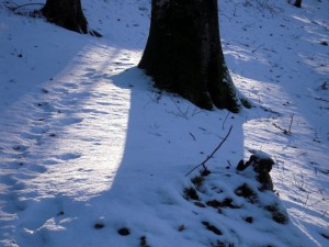 allenbach-christiane-neige-2j-30