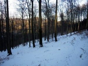 allenbach-christiane-neige-2j-35