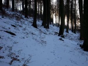 allenbach-christiane-neige-2j-36