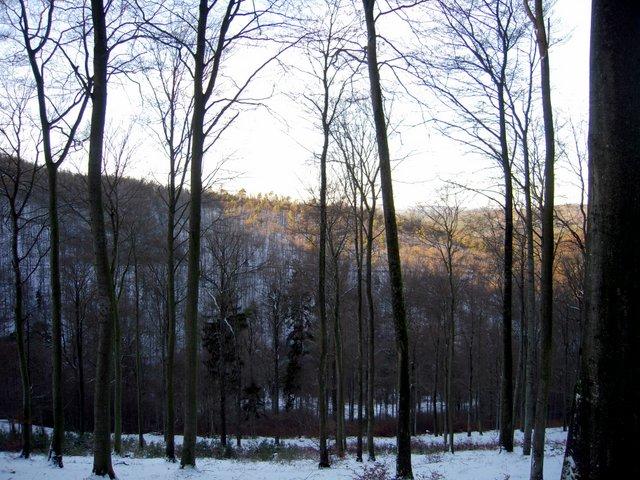allenbach-christiane-neige-2j-37