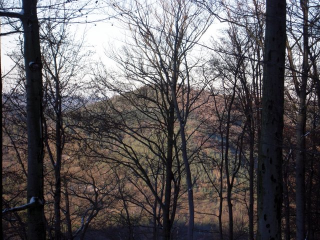 allenbach-christiane-neige-2j-41