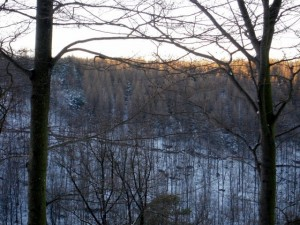 allenbach-christiane-neige-2j-42