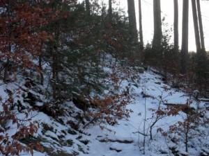 allenbach-christiane-neige-2j-43