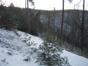 allenbach-christiane-neige-2j-50