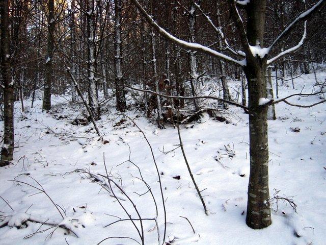 allenbach-christiane-neige-2j-52