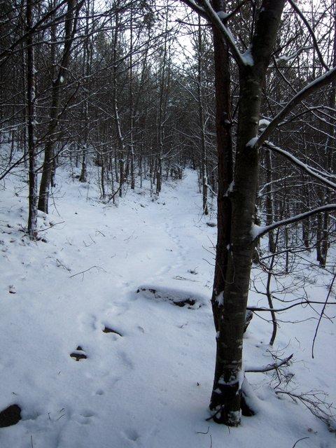 allenbach-christiane-neige-2j-53