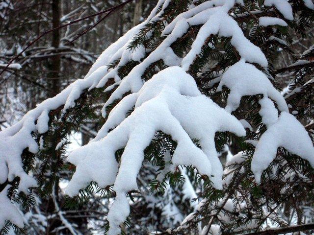allenbach-christiane-neige-2j-55