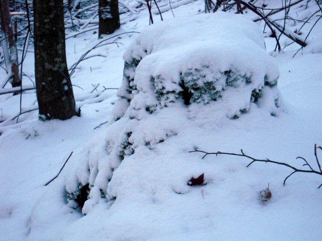 allenbach-christiane-neige-2j-59