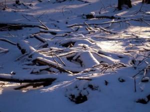allenbach-christiane-neige-2j-64