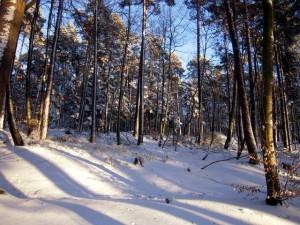 allenbach-christiane-neige-2j-68