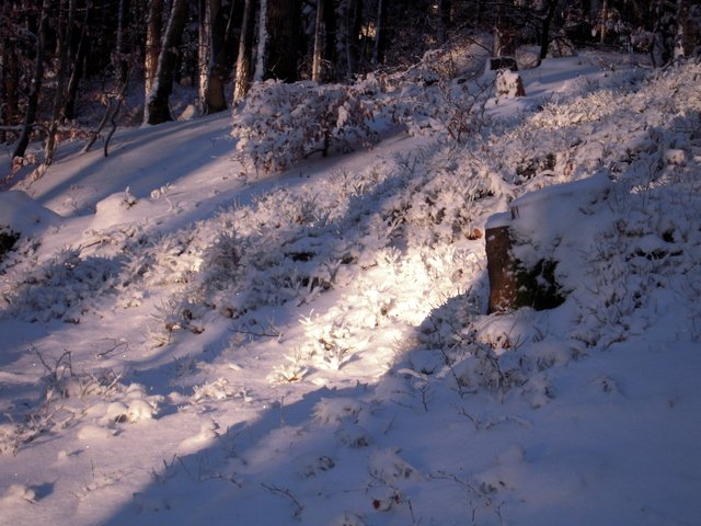 allenbach-christiane-neige-2j-75