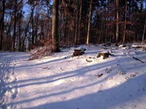allenbach-christiane-neige-2j-83