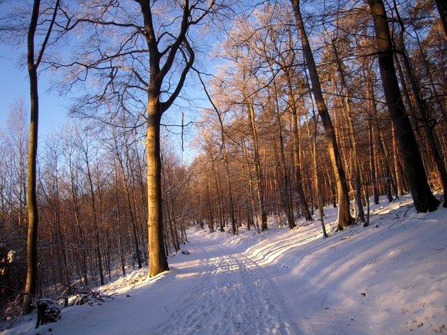 allenbach-christiane-neige-2j-95