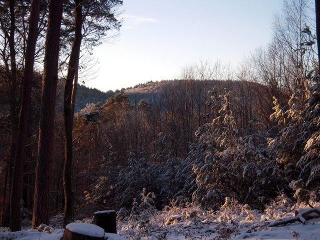 allenbach-christiane-neige-2j-96