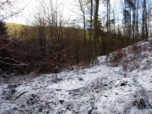 allenbach-christiane-premiere-neige-2017-14