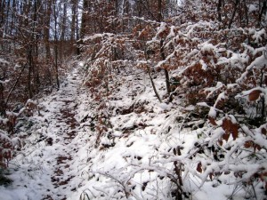 allenbach-christiane-premiere-neige-2017-18
