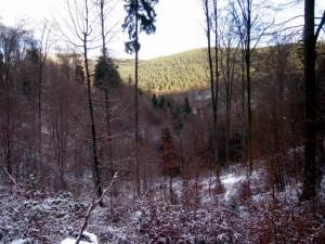 allenbach-christiane-premiere-neige-2017-21