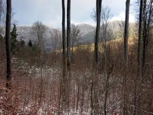 allenbach-christiane-premiere-neige-2017-26