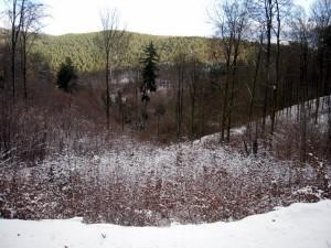 allenbach-christiane-premiere-neige-2017-27
