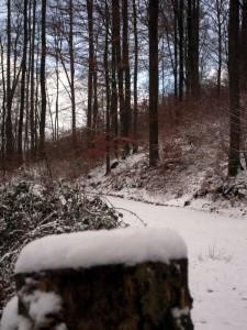 allenbach-christiane-premiere-neige-2017-28